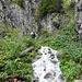 Canyoning oder Bergwandern? So präsentierte sich heute der Wanderweg durch das Flürentobel...