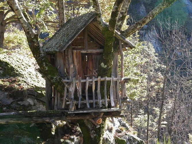 La casa sull albero della cogliata fotos for Planimetrie della casa sull albero