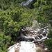 Die kurze Kletterstelle mit Wurzeln, Ästen und Felsen als Tritte und Griffe, von oben gesehen.