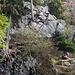 """Nähe Pt 1254, """"Falle"""" mit Sitzbank, oberhalb geht es gleich zur """"Sache"""". Einstieg obere Rallig Stöcke, eine erste Felsstufe muss erstiegen werden um auf den Grat zu kommen. Wer da Probleme hat, sollte besser auch nicht weiter… Es wird nicht besser (-;"""