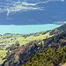 """""""Dank"""" der enormen Niederschläge von letzter Woche (134 mm in knapp zwei Tagen im Niederurner Täli) ist der See ganz milchig"""
