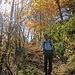 Abstieg nach Ried-Mörel durch den schönen Herbstwald