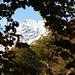 Blick von der ersten Hütte auf 1160müM Richtung Pizzi di Valeri