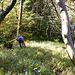 Impressionen aus Brandegg West, unterer Teil
