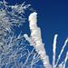 Von Wind und Kälte geformt