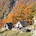 Alpe Motto 1548m