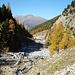 Blick zurück zur Alp Purcher