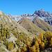 Goldener Herbst im Val Trupchun