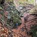 <b>Poco dopo dobbiamo superare un tratto molto ripido, assicurato da catene e da gradini di legno. Da qui, in circa sette minuti di salita, raggiungiamo il vasto maggengo di Cioascio, cosparso di numerosi rustici. </b>