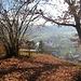 Aussichtspunkt Burghalde