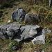 Solides Material: diese Steinbänkli habe ich vor über 40 Jahren schon benutzt.