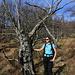 der Wanderweg führt durch lichten Steineichenwald
