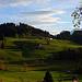 Der Winterberg, gesehen von Goldiwil