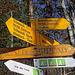 """Hier nehmen wir den Weg """"Reha"""" im Abstieg kommen wir dann vom """"Winterberg"""" her hinunter"""