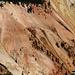 I colori di questo canyon mi ricordano vagamente quelli di [http://www.hikr.org/tour/post43345.html Bryce].