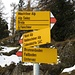 Hier trennt sich der weitere Aufstieg vom Weg zur Vazer Alp: diese wird nicht betreten, mein Aufstieg führt nun zur Mastrilser Alp.