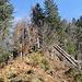 wilder Aufstieg zum Kalvarienberg