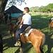 Reitausflug in den Llanos - Die Llanos sind ein Farmland mit vielen Haciendas, Viehzucht und Cowboys