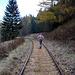 Ein Stück sind wir die alte Bahnlinie entlang gegangen, aber dann geht es bald steil die Waldlehne hinauf bis auf den Schillingkamm.