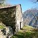 Ich erwartete die Ruine von Arbea 904m (gleich hoch) - und finde eine Alphütte mit Ziegenstall. Fogola 920m!