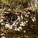 Ruine Fogola Pt.861  auf dem alten Kuhweg zum Ri Flüsschen hinunter