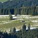 Eine einsame Scheune inmitten Wiese, Wald und Schneeflecken.
