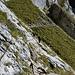 passage avec chaînes dans le bas de la descente face Sud de la Dent d'Oche 2222m