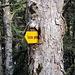 """der Baum """"verschlingt"""" das Hinweisschild"""