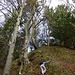 Fixseil-gesicherte Steilstufe an der Schwammegg