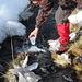 [u Tapio ] recupera dell' acqua ghiacciata !!!