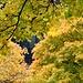 ..und drumherum Herbst vom Feinsten