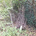 Der Einstieg ins Unterholz des Rellsten-Sporns ist nicht zu übersehen.