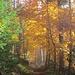 Herbst!!