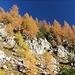 Herbst im Gseis