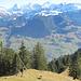 Wenn das Reinhold Messner sähe! Ein Schnappschuss eines Yeti!