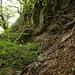 <br />Der Weg unter dem Felsen entlang ist gut erkennbar<br /><br />Blick zurück (zum letzten Mal, vielleicht)