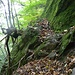 Dem Felsen entlang Blick zurück (zum letzten Mal, vielleicht)  ♬♫♬ Montagne Verdi ♬♫♬ [https://www.youtube.com/watch?v=C8SuNmIbJGM] ________ ______