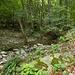 Valle di Gorduno (P.509)  ♫♬♫ Juste Pour Me Souvenir ♫♬♫ [http://www.youtube.com/watch?v=pBU7VvCYZIY] ______ __