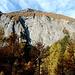 Bretterwand über der Teischnitzschlucht.