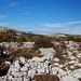 Reste von Steinhütten, Almwirtschaft