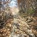 sentiero verso San Rocco