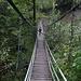die kleine Hängebrücke über den Trüebbach