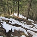 Im Abstieg vom Studberg ist der Weg manchmal tückisch glitschig.