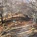 Sbuco in questo punto del sentiero e proseguo dritto tenendomi sulla cresta a sinistra della via normale