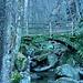 Ponte sul Rio Ponte Secco