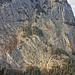 Bester Blick in die Simmenfluh [tour14867 Sunnighorn]