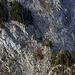 Aufstieg Simmenfluh, von rechts unten nach links oben
