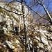Genussreiches Herbst-Kraxeln
