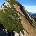 Vom Walenstein stiegen wir ab bis unter die Felsen. Anschliessend ging es die hintere Grasrinne hoch zum Grat. Der bewaldete Gipfel ist der Pt. 1859.