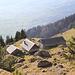 Eine idyllische Alp: Alp Wis